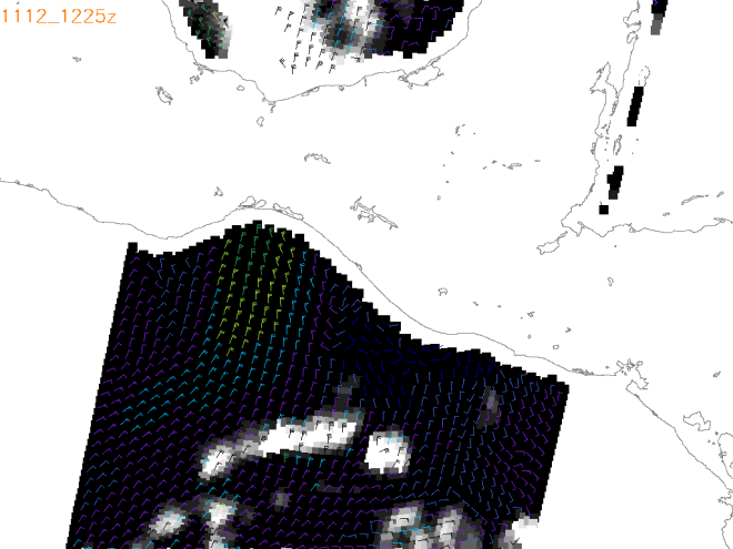 Figure 3.  WindSat image of wind vector valid 1200 UTC 12 November 2013, courtesy of the Naval Research Laboratory.